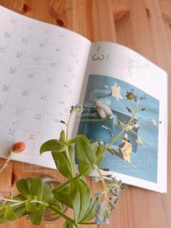 綺麗なカレンダーの写真・画像素材[3014009]