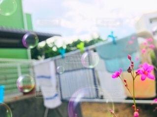 お洗濯物の写真・画像素材[3729989]