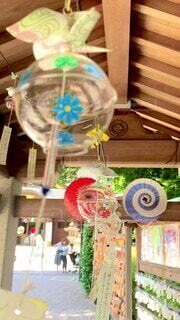 花,夏,屋内,神社,楽しい,風鈴,音,癒し,可愛い,思い出,納涼,お参り,花柄,お出掛け,フォトジェニック,流行り,日帰り,インスタ映え