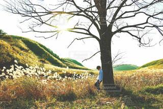 木の隣に立っている男の写真・画像素材[956310]