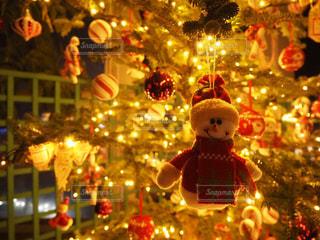 クリスマス ツリーの横に座っているぬいぐるみの動物のグループの写真・画像素材[929034]