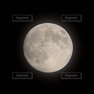 月の写真・画像素材[534805]