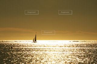 大海原行く。の写真・画像素材[958580]