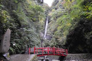 洒水の滝の写真・画像素材[1449962]