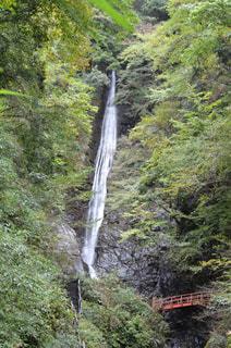 洒水の滝の写真・画像素材[1449963]