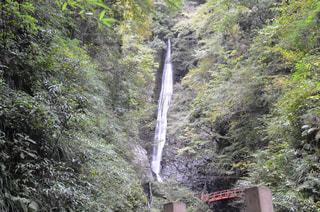 洒水の滝の写真・画像素材[1449964]