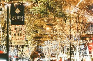 冬,屋外,アート,樹木,イルミネーション,ライトアップ,クリスマス,写真,梅田,大阪駅,クリスマスツリー,グランフロント,ショッピングモール,アンバサダー,グランフロント大阪,シャンパンゴールド,グランフロントクリスマス,Grand Wish Christmas 2020,Winter Voyage Tree,「Winter Voyage -世界を繋ぐ希望の旅-」