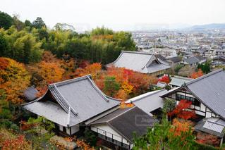 秋の景色の写真・画像素材[893107]