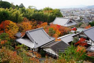 紅葉寺 - No.909551