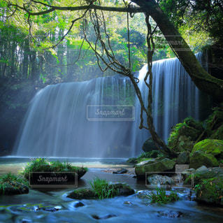 滝,鍋ヶ滝,熊本県,裏見の滝,小国町