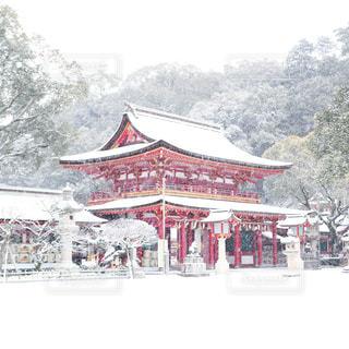 雪景色,雪化粧,太宰府,太宰府天満宮,桜門