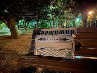 夜のベンチとアコーディオンの写真・画像素材[3755589]