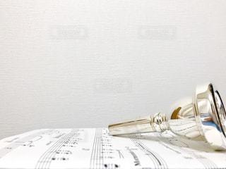 Tubaのマウスピースの写真・画像素材[806389]
