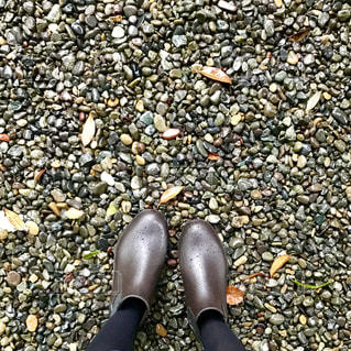 岩の上の黒い靴のペアの写真・画像素材[820041]