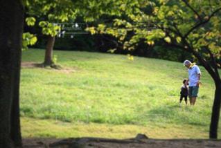 公園でフリスビーを投げ男の写真・画像素材[738895]