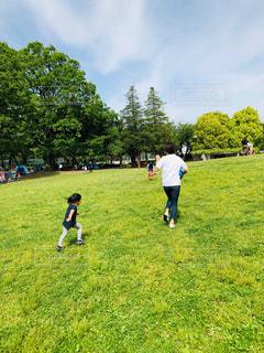 家族,公園,春,屋外,後ろ姿,子供,女の子,人物,背中,人,お出かけ,3歳