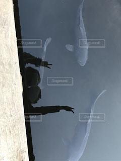 空気を通って飛んで男の写真・画像素材[745965]