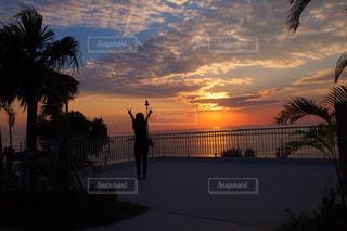日没の前にヤシの木の写真・画像素材[747653]