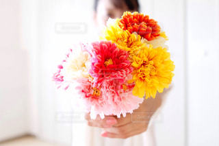 花束を差し出してプレゼントする女性の手元の写真・画像素材[3207248]