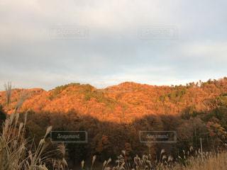 自然,夕日,山