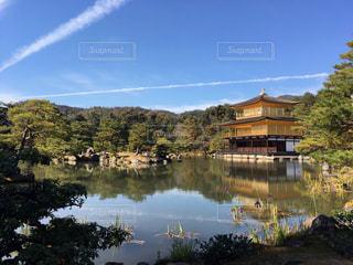 空,京都,水面,池,新緑,飛行機雲,金閣寺,映り込み
