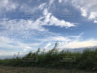 空,雲,秋空