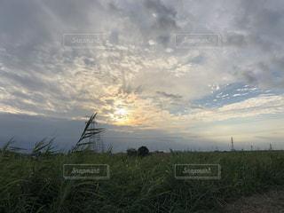 雲,夕焼け,秋空
