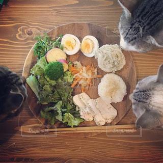 木製テーブルの上に座っている猫の写真・画像素材[1272908]
