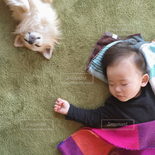 犬の隣に横たわっている赤ちゃんの写真・画像素材[1195773]