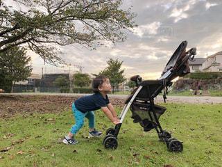子ども,空,公園,秋,緑,雲,赤ちゃん,ベビーカー,秋の空,陽ざし