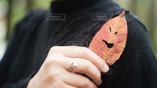 秋の写真・画像素材[832144]