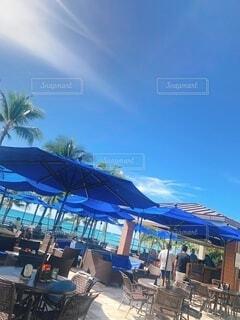 空,傘,屋外,ビーチ,雲,青,樹木,ヤシの木,ハワイ,リゾート,スイミング プール