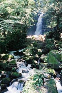 滝,熊本,白糸の滝,熊本市
