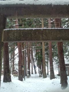 雪に覆われた建物の写真・画像素材[963487]