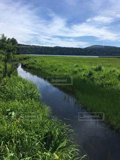 水の体を流れる川の写真・画像素材[1409011]