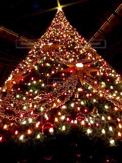 近くにクリスマス ツリーのアップの写真・画像素材[770489]