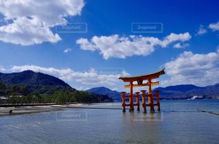 厳島神社の写真・画像素材[1038352]