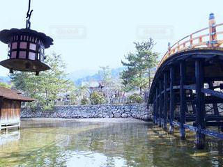 水の体の上の橋の写真・画像素材[1315791]