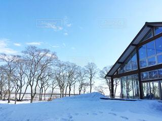 冬の北海道の写真・画像素材[1812604]