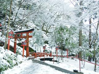 貴船神社の写真・画像素材[1812612]