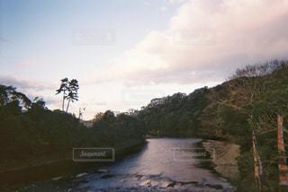 自然,空,朝日,緑,晴れ,川,朝,三重,フィルム,伊勢,自然光,フィルム写真,フィルムフォト