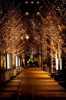 屋外,大阪,イルミネーション,都会,照明,グランフロント