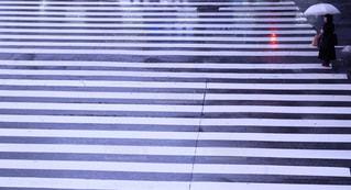 雨の写真・画像素材[833995]