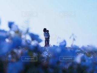 青の写真・画像素材[761559]