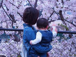 春,桜,親子,ママと子ども,ママと子供