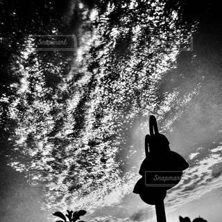 空の写真・画像素材[830008]