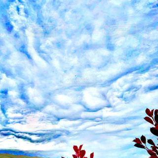 空を飛んでいる赤と白の凧の写真・画像素材[1134560]