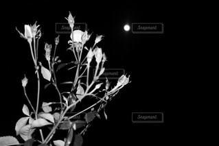 テーブルの上に座っての花で一杯の花瓶 - No.813096