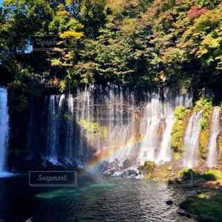 滝の虹の写真・画像素材[1598357]