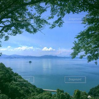空,絶景,樹木,熊本,田浦,八代海,御立岬